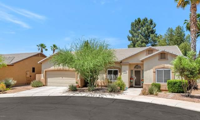 3008 E Jeanette Court, Phoenix, AZ 85050 (MLS #6080800) :: Devor Real Estate Associates