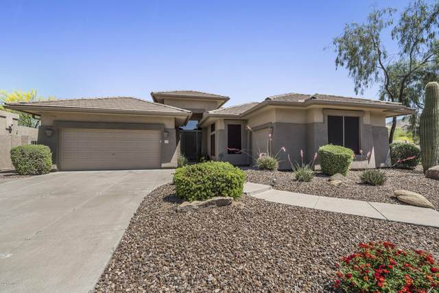 7528 E Torrey Point Circle, Mesa, AZ 85207 (MLS #6080802) :: Homehelper Consultants