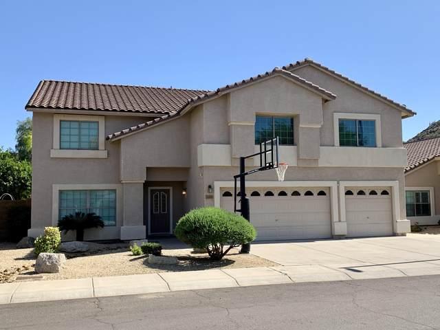 2035 E Ruby Lane, Phoenix, AZ 85024 (MLS #6080817) :: Devor Real Estate Associates