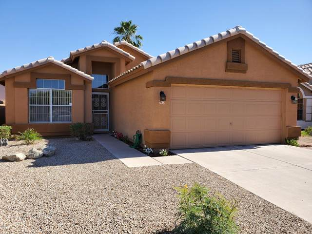 973 E Constitution Drive, Chandler, AZ 85225 (MLS #6080818) :: The Everest Team at eXp Realty