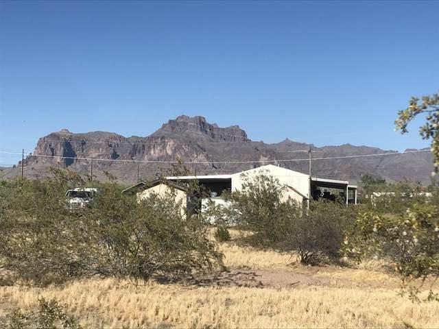676 N Colt Road, Apache Junction, AZ 85119 (MLS #6080893) :: Brett Tanner Home Selling Team
