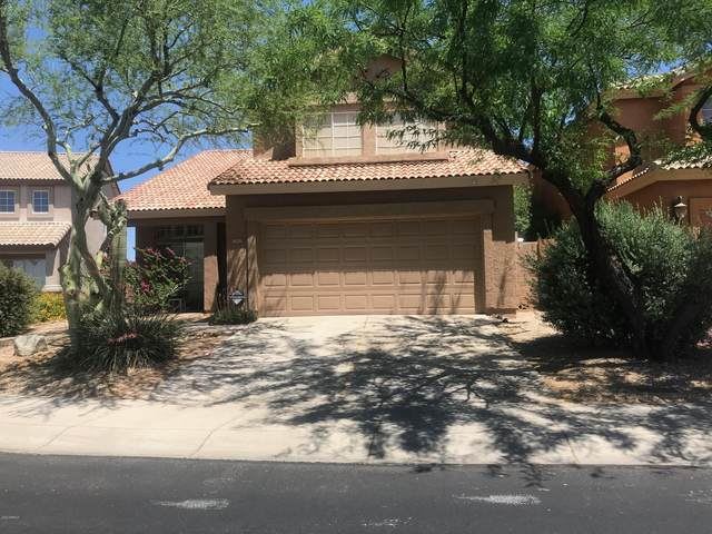 31231 N 43rd Street, Cave Creek, AZ 85331 (MLS #6080982) :: Openshaw Real Estate Group in partnership with The Jesse Herfel Real Estate Group