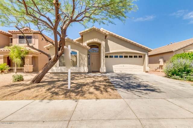 28310 N Desert Hills Drive, San Tan Valley, AZ 85143 (MLS #6081032) :: Riddle Realty Group - Keller Williams Arizona Realty