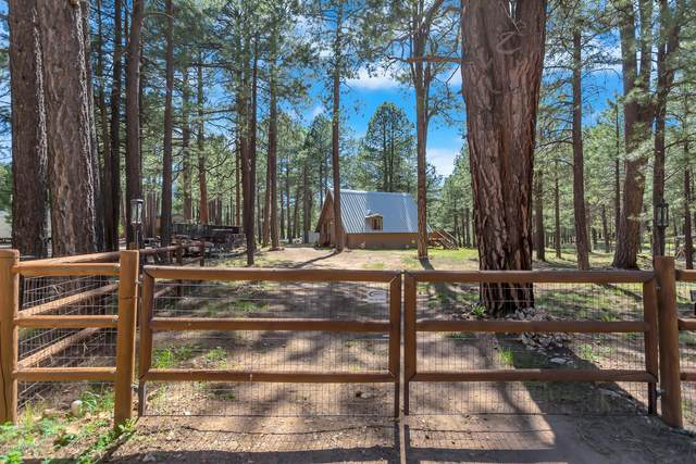 1286 Happy Hunting Way, Forest Lakes, AZ 85931 (MLS #6081072) :: Conway Real Estate