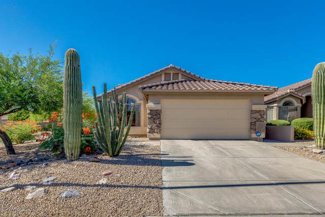 10266 E Hillery Drive, Scottsdale, AZ 85255 (MLS #6081154) :: The W Group