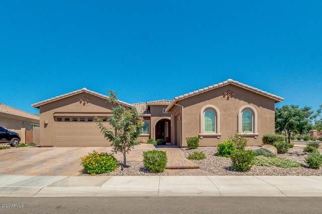 3331 S Huachuca Way, Chandler, AZ 85286 (MLS #6081252) :: The Daniel Montez Real Estate Group