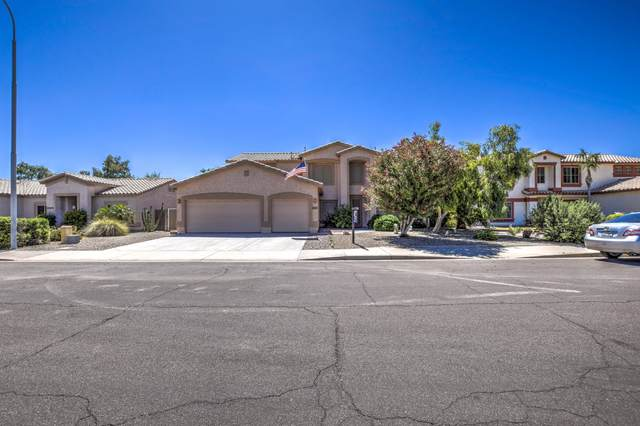 4920 S Springs Drive, Chandler, AZ 85249 (MLS #6081266) :: The Property Partners at eXp Realty