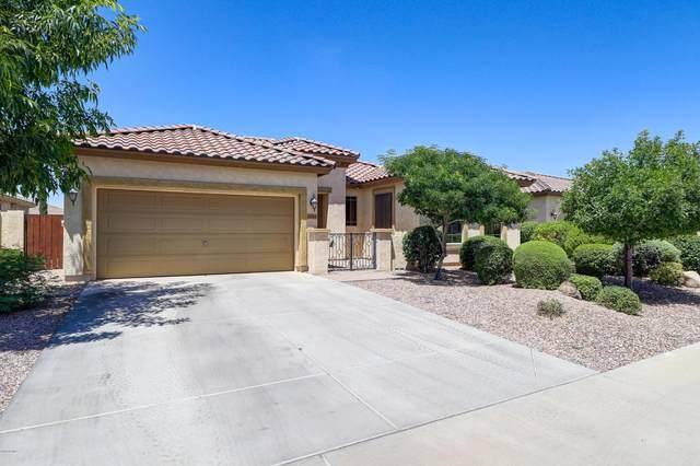 14822 W Luna Drive S, Litchfield Park, AZ 85340 (MLS #6081360) :: Keller Williams Realty Phoenix