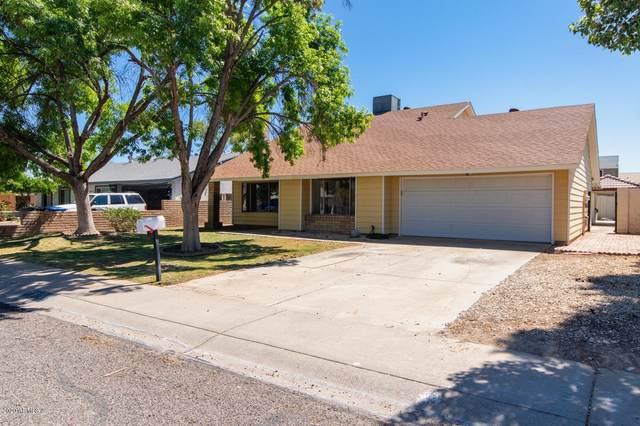 16019 N 23RD Drive, Phoenix, AZ 85023 (MLS #6081380) :: Devor Real Estate Associates
