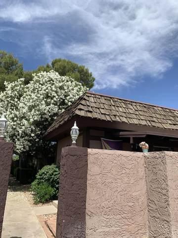 916 S Casitas Drive D, Tempe, AZ 85281 (MLS #6081393) :: Revelation Real Estate
