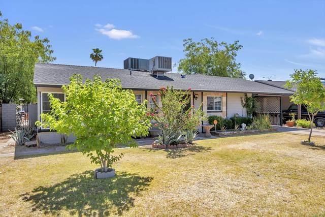 5113 N 20 Avenue, Phoenix, AZ 85015 (MLS #6081401) :: REMAX Professionals