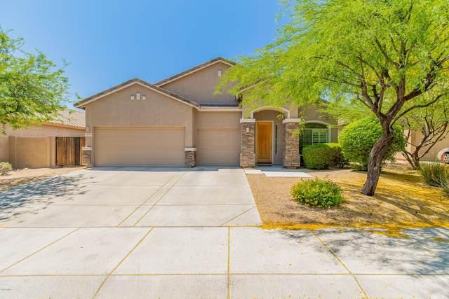 8349 W Andrea Drive, Peoria, AZ 85383 (MLS #6081420) :: The W Group