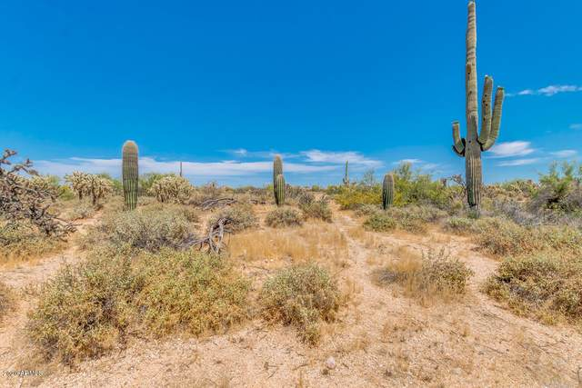 0 E Orville Street, Florence, AZ 85132 (MLS #6081462) :: Klaus Team Real Estate Solutions