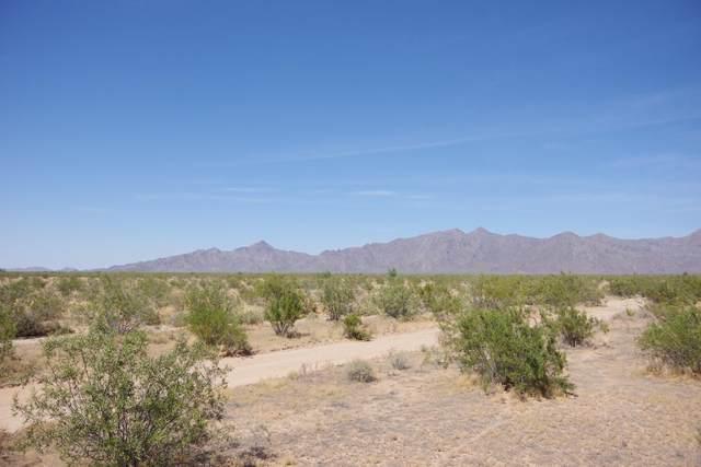0 W Patterson Road, Buckeye, AZ 85326 (MLS #6081584) :: neXGen Real Estate