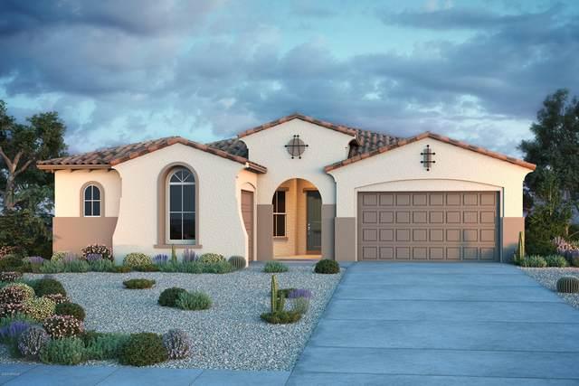 19723 W Avalon Drive, Buckeye, AZ 85396 (MLS #6081598) :: Riddle Realty Group - Keller Williams Arizona Realty