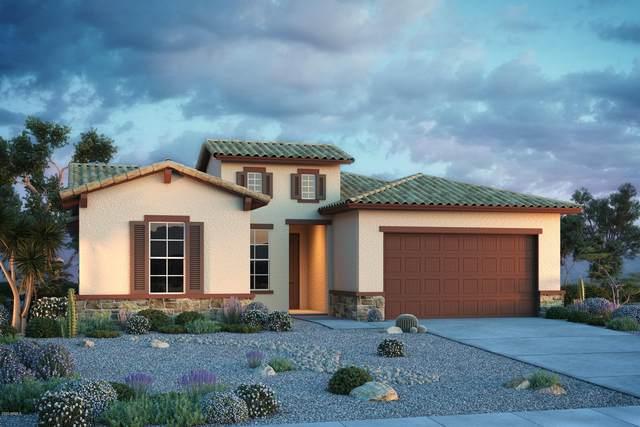 19739 W Avalon Drive, Buckeye, AZ 85396 (MLS #6081604) :: Riddle Realty Group - Keller Williams Arizona Realty