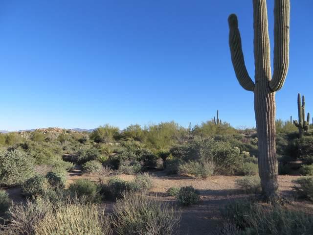 9744 E Estancia Way, Scottsdale, AZ 85262 (MLS #6081639) :: Yost Realty Group at RE/MAX Casa Grande