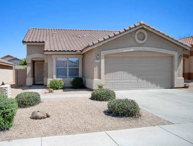 5116 E Roy Rogers Road, Cave Creek, AZ 85331 (MLS #6081686) :: Openshaw Real Estate Group in partnership with The Jesse Herfel Real Estate Group