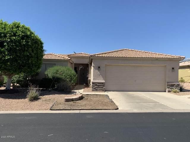 2101 S Meridian Road #317, Apache Junction, AZ 85120 (MLS #6081725) :: My Home Group