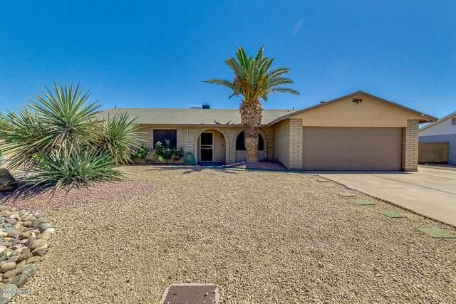 5003 W Windrose Drive, Glendale, AZ 85304 (MLS #6081742) :: neXGen Real Estate
