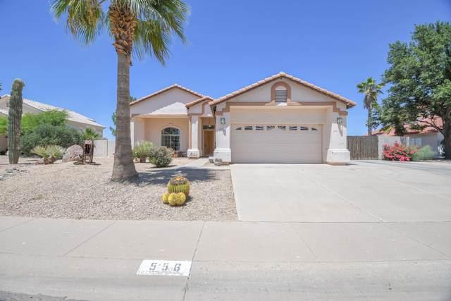 556 W Casa Grande Lakes Boulevard, Casa Grande, AZ 85122 (MLS #6081777) :: Kepple Real Estate Group