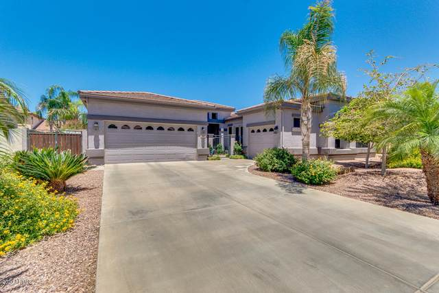280 E Frances Lane, Gilbert, AZ 85295 (MLS #6081779) :: The Everest Team at eXp Realty