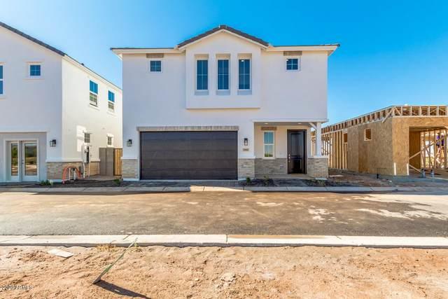 5539 S Dillon, Mesa, AZ 85212 (MLS #6081780) :: Balboa Realty