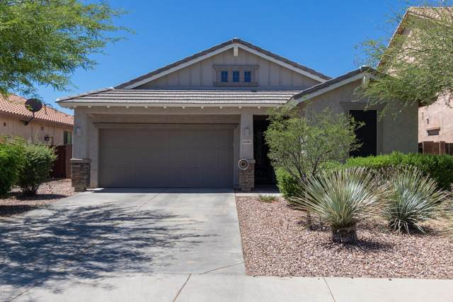 12081 W Dove Wing Way, Peoria, AZ 85383 (MLS #6081788) :: Maison DeBlanc Real Estate