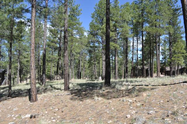 3410 S Las Colinas Court, Flagstaff, AZ 86005 (MLS #6081810) :: neXGen Real Estate