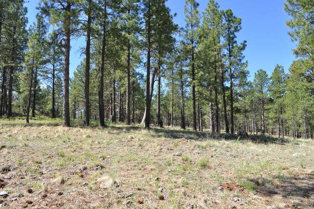 1887 E Hardscrabble Court, Flagstaff, AZ 86005 (MLS #6081820) :: neXGen Real Estate