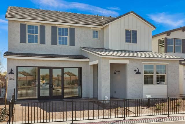 1015 S Hudson Drive, Chandler, AZ 85225 (MLS #6081830) :: The W Group