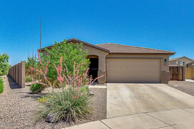 4524 E Longhorn Street, San Tan Valley, AZ 85140 (MLS #6081850) :: The Laughton Team