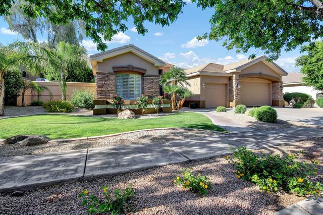 446 W Louis Way, Tempe, AZ 85284 (MLS #6081866) :: The Everest Team at eXp Realty