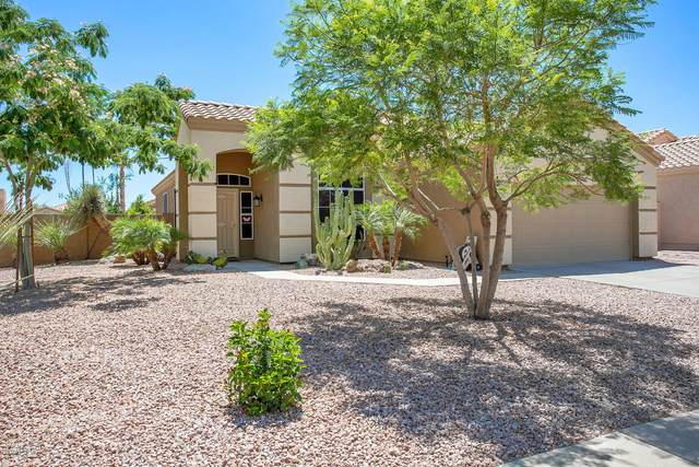 7359 E Lakeview Avenue, Mesa, AZ 85209 (MLS #6081900) :: The Bill and Cindy Flowers Team
