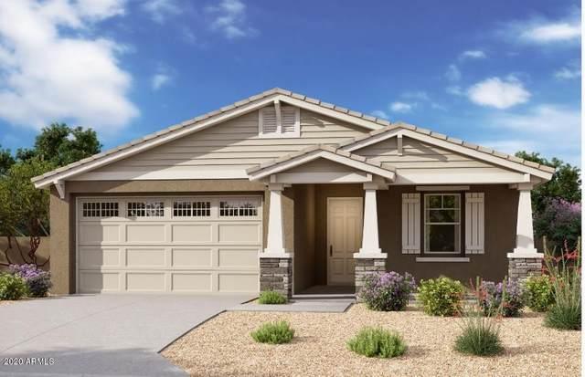 22679 E Estrella Road, Queen Creek, AZ 85142 (MLS #6081923) :: Balboa Realty