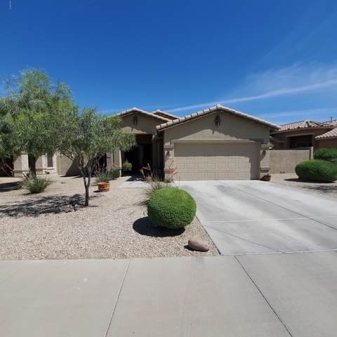 17558 W Lavender Lane, Goodyear, AZ 85338 (MLS #6082010) :: neXGen Real Estate