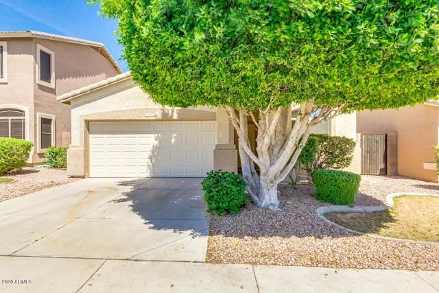 1147 S Amandes Street, Mesa, AZ 85208 (MLS #6082015) :: Revelation Real Estate