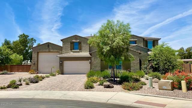 4642 N 186TH Lane, Goodyear, AZ 85395 (MLS #6082016) :: Riddle Realty Group - Keller Williams Arizona Realty