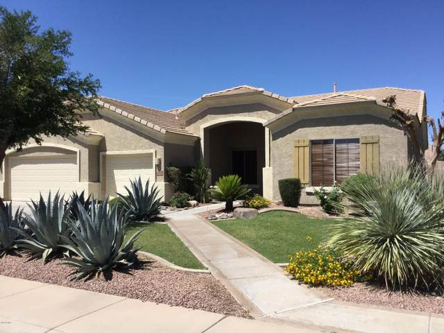 2668 S Balboa Drive, Gilbert, AZ 85295 (MLS #6082024) :: Klaus Team Real Estate Solutions