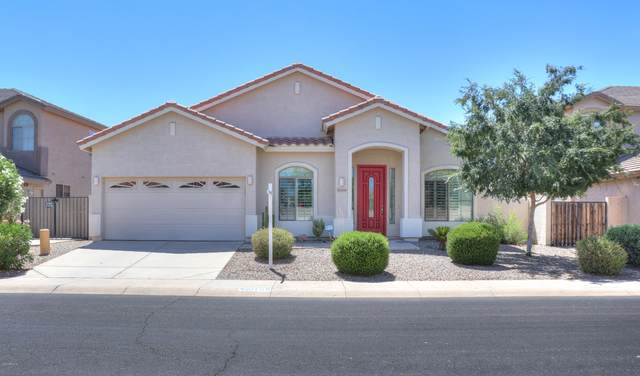 20768 N Donithan Way, Maricopa, AZ 85138 (MLS #6082030) :: The AZ Performance PLUS+ Team