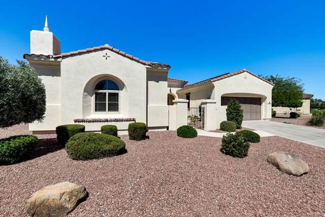 13550 W Sola Drive, Sun City West, AZ 85375 (MLS #6082036) :: Maison DeBlanc Real Estate