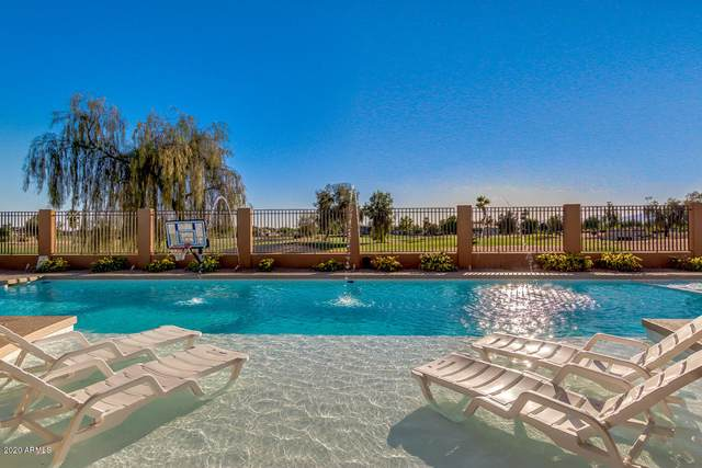 2660 N 141ST Lane, Goodyear, AZ 85395 (#6082042) :: Luxury Group - Realty Executives Arizona Properties