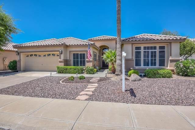 6722 W Crest Lane, Glendale, AZ 85310 (MLS #6082081) :: neXGen Real Estate