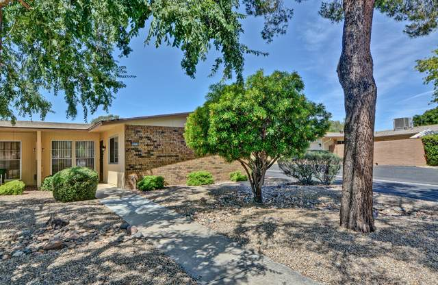 18214 N Opal Drive, Sun City West, AZ 85375 (MLS #6082091) :: Nate Martinez Team