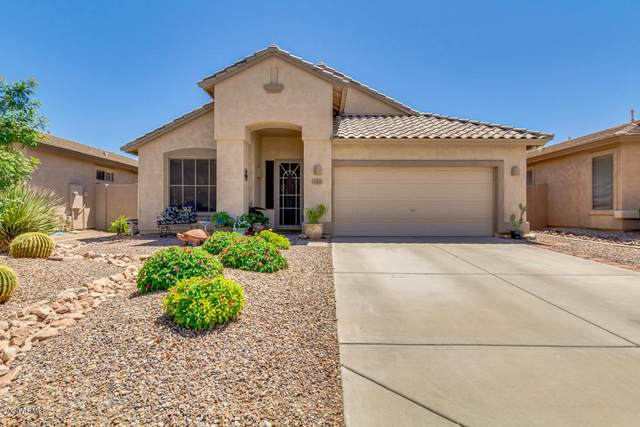 141 E Canary Court, San Tan Valley, AZ 85143 (MLS #6082131) :: Dijkstra & Co.