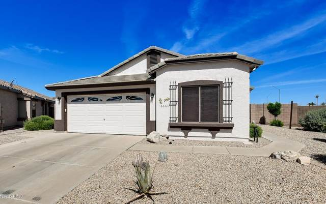 16664 N 162ND Lane, Surprise, AZ 85374 (MLS #6082141) :: Yost Realty Group at RE/MAX Casa Grande