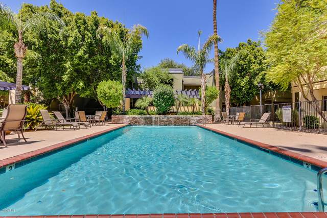 740 W Elm Street #222, Phoenix, AZ 85013 (MLS #6082196) :: Revelation Real Estate