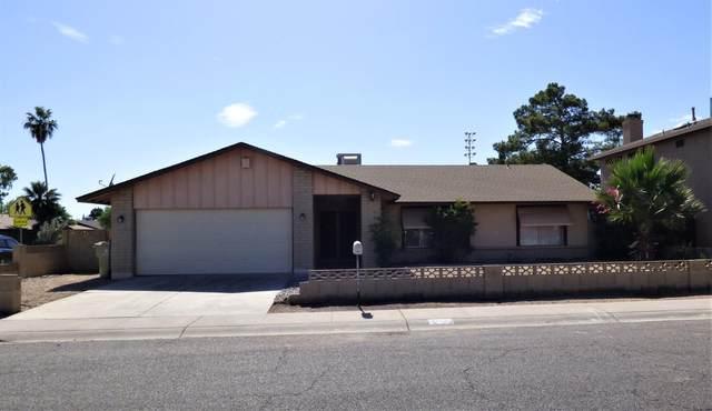 14404 N 52ND Drive, Glendale, AZ 85306 (MLS #6082226) :: neXGen Real Estate
