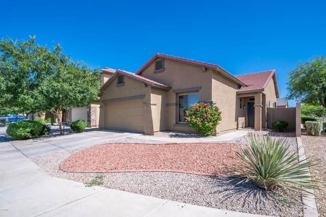 3741 W Saint Anne Avenue, Phoenix, AZ 85041 (MLS #6082232) :: Revelation Real Estate