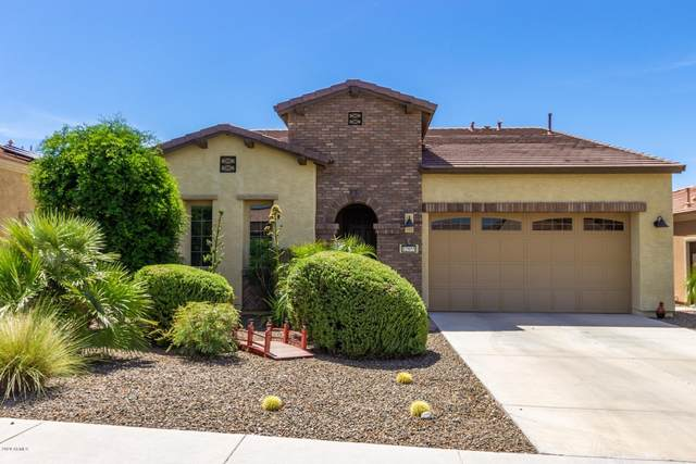 12955 W Hummingbird Terrace, Peoria, AZ 85383 (MLS #6082255) :: Maison DeBlanc Real Estate